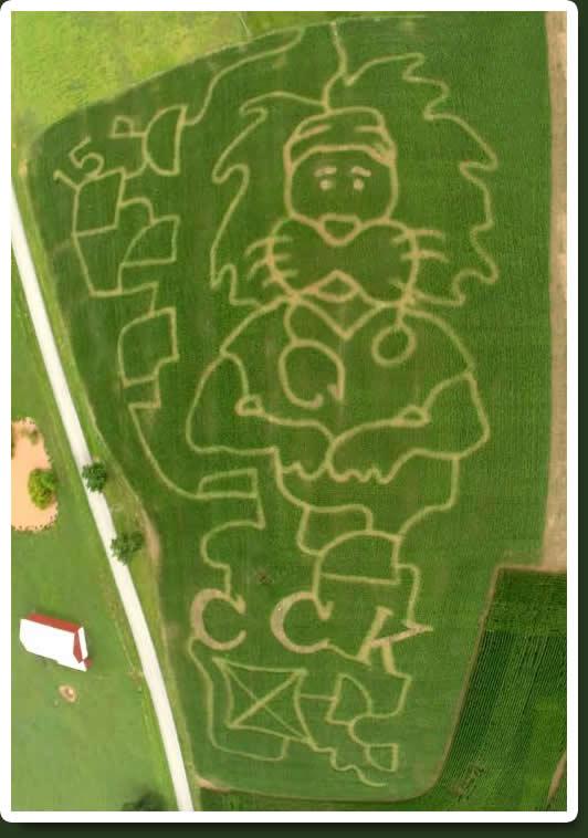 corn maze just piddlin