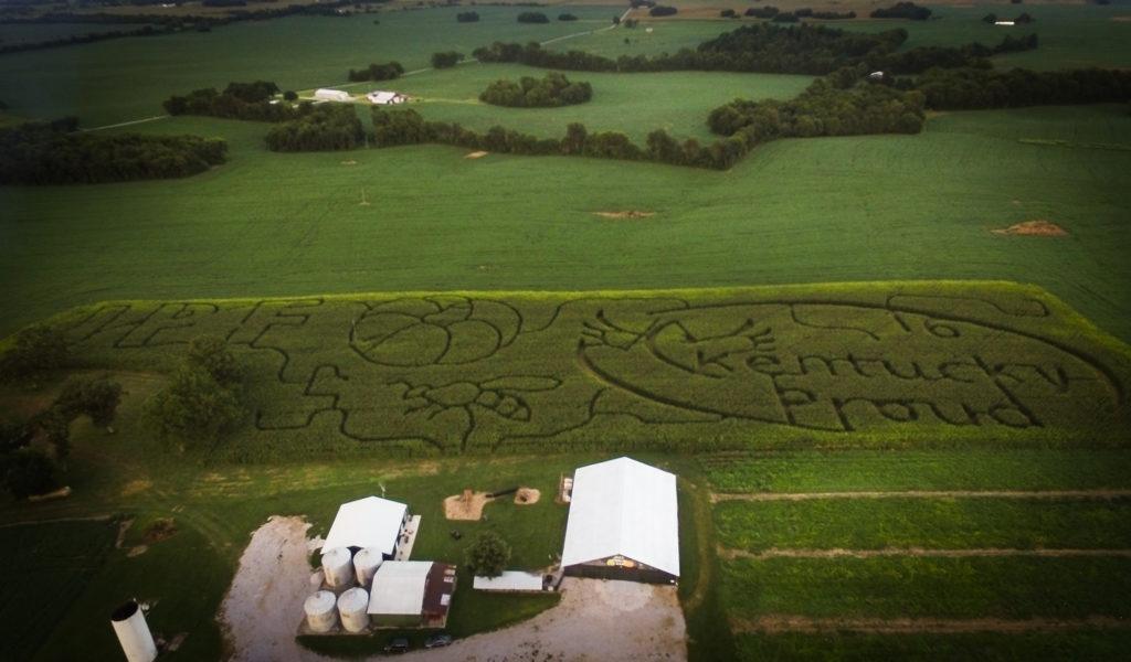 Corn Maze Bowling Green