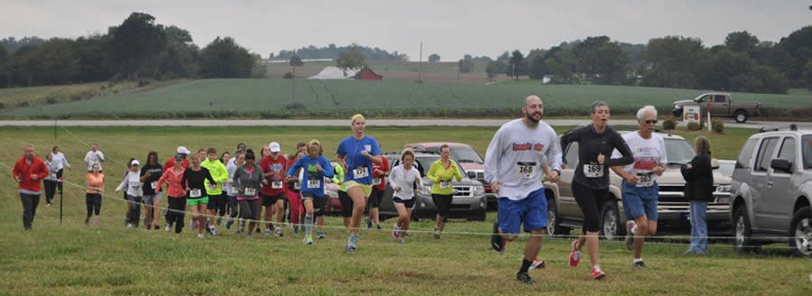 Pumpkin Run Race and Walk