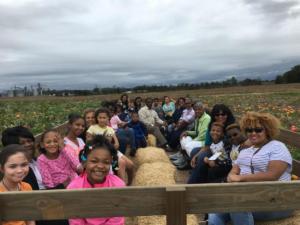 Just Piddlin Farm 2018 (15)