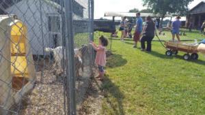 Just Piddlin Farm 2018 (24)