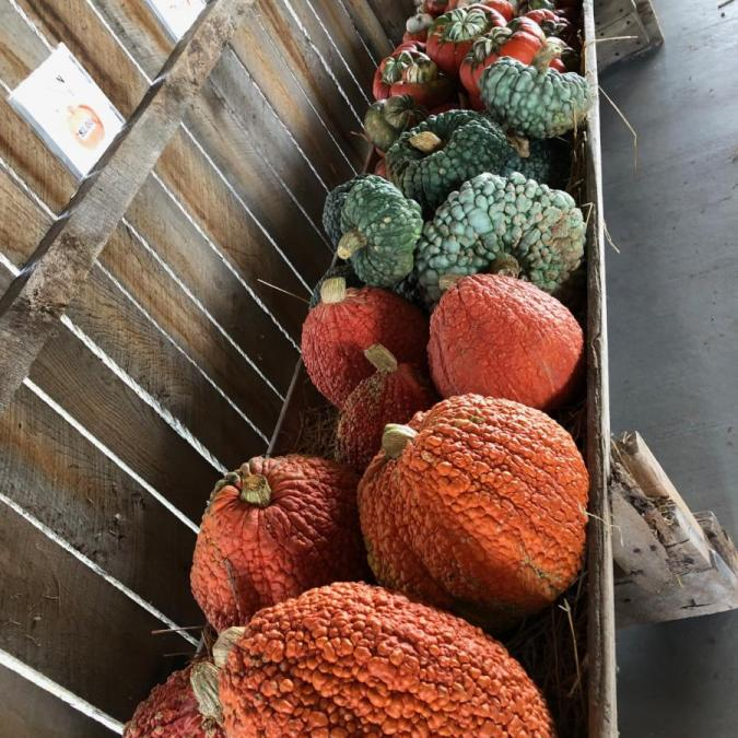 trough of produce