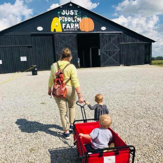 wagon into barn